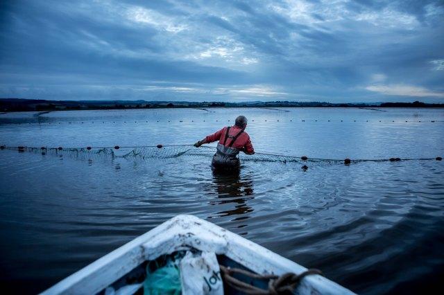 river exe salmon fishing_-10