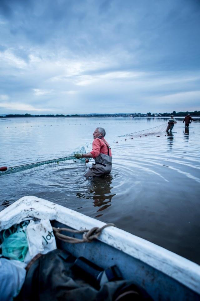 river exe salmon fishing_-11