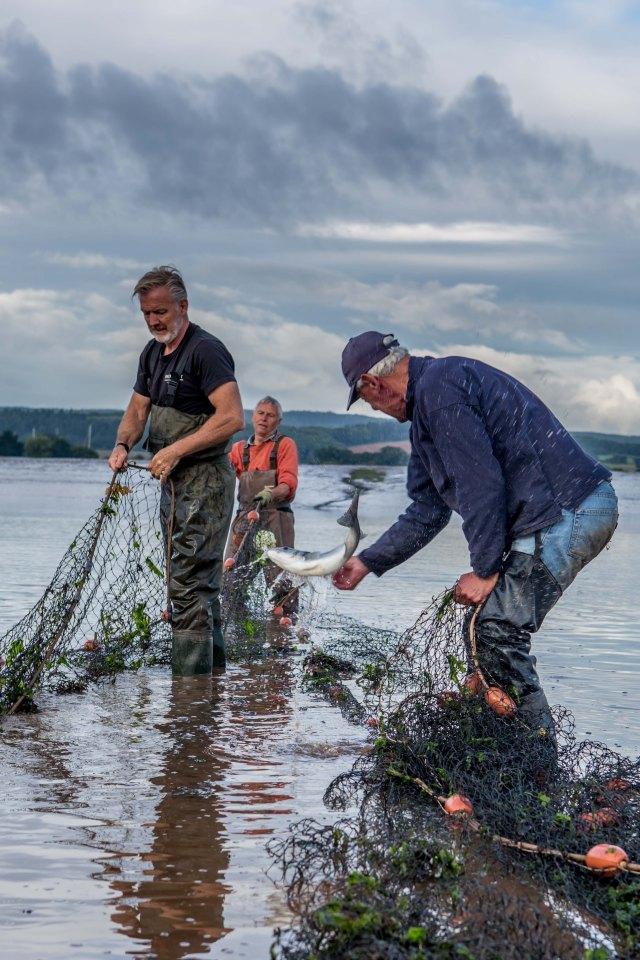 river exe salmon fishing_-30
